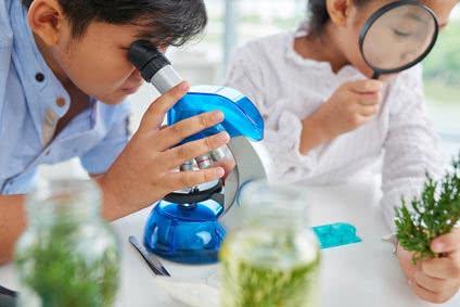 Biologie Studium mit Bachelor of Science